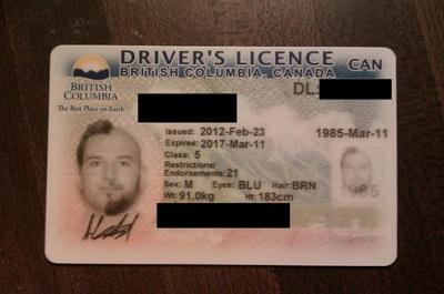 fotos carnet conducir