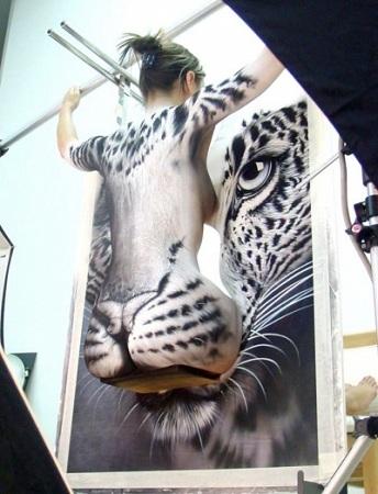 felino pintura